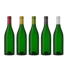 Set 5 realistic green bottles of wine vector