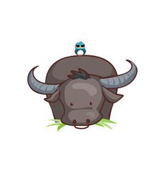 Buffalo eating grass and bird vector