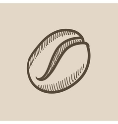 Coffee bean sketch icon vector