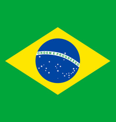 Colored flag of brazil vector