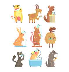 Funny animals taking a shower and washing set for vector