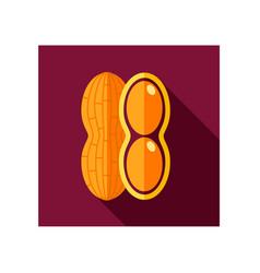 peanut flat icon vegetable vector image