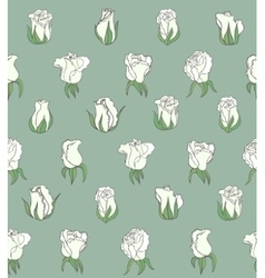 Seamless background with white roses vector