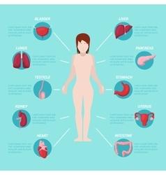 Human body anatomy medical scheme vector