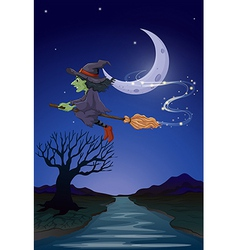 A witch travelling with her broomstick in the vector