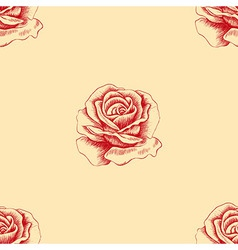 Sketch red rose seamless pattern hand drawn flower vector