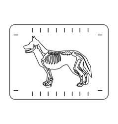 Dog x-ray icon in outline style isolated on white vector image vector image