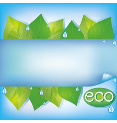 Eco background with green leaves vector image vector image