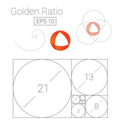 Golden ratio template logo fibonacci vector