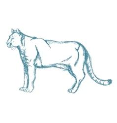 Panther sketch blue vintage vector