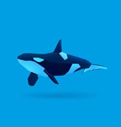Orca vector