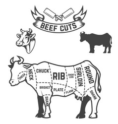 Beef cuts butcher diagram cow on white background vector