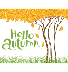 Hello autumn with tree with faling leaves vector image