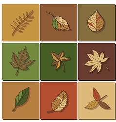 leaves icon green leaf of forest tree vector image