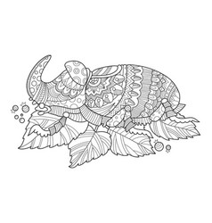 rhinoceros beetle insect coloring book vector image