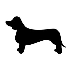 Silhouette of dachshund isolated on white vector
