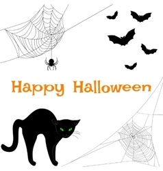 webs black cat and bats vector image vector image