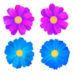 Set of isolated buds of flowers blue and purple vector