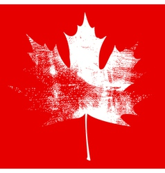 Grunge Maple Leaf White vector image