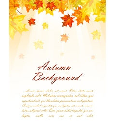 Autumn frame vector