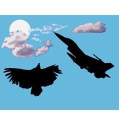 aircraft and bird eagle vector image vector image