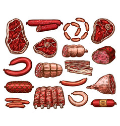 fresh meat and sausage sketch for food design vector image vector image