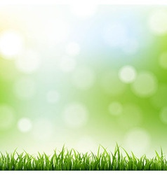 Grass border with bokeh background vector