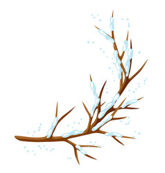 Winter branch of tree and snow seasonal vector