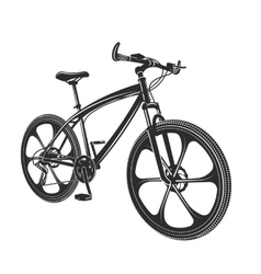 Moden bicycle isolated on vector