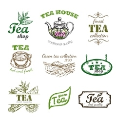 Sketch tea logo set vector