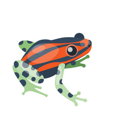 frog cartoon tropical green red animal cartoon vector image