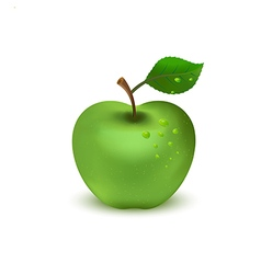 Green apple on white background1 01 vector