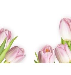 Beautiful bouquet of pink tulips eps 10 vector