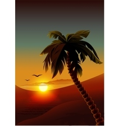 Palm tree on tropical island Night romantic vector image vector image