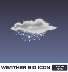 Snow Rain Icon vector image