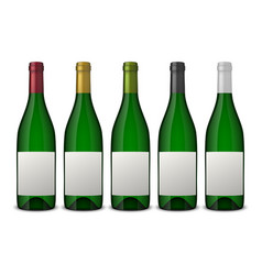 Set 5 realistic green bottles of wine with vector