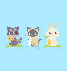 Cute baby animals baby raccoon kitten bunny vector