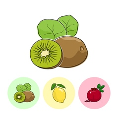 Fruit icons kiwifruit lemon  pomegranate vector