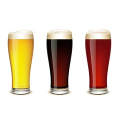 Set of glasses with beer vector