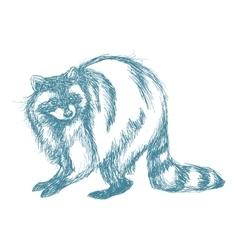 Raccoon sketch blue vintage vector