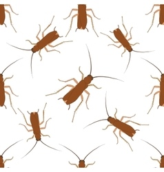 Seamless pattern with cockroach blattella vector