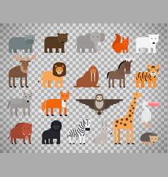 zoo animals set on transparent background vector image