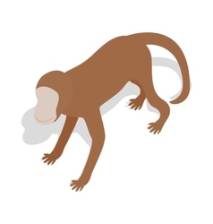 Monkey icon in isometric 3d style vector