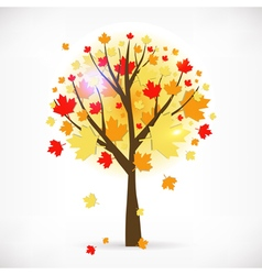 Beautiful autumn tree vector image