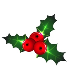 Christmas mistletoe icon vector