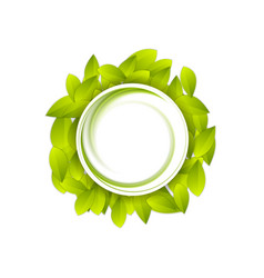 Green summer leaves abstract video animation vector