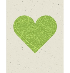 Heart shape with green leaf texture Nature vector image