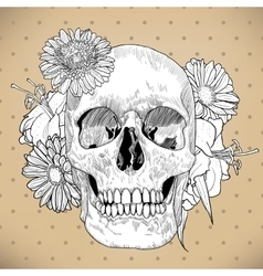 Vintage greeting card with hand drawn skull and vector