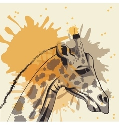 Giraffe icon animal and art design vector