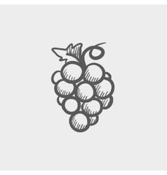 Bunch of grapes sketch icon vector image